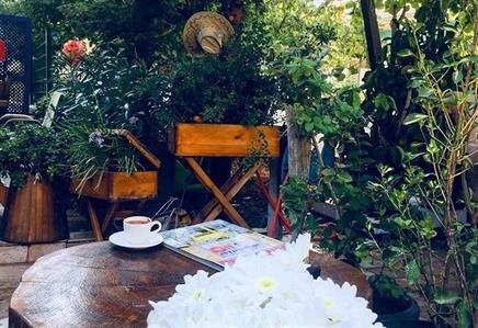 Salkım Cafe