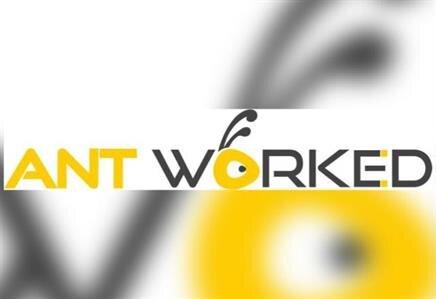 Ant Worked Yazılım Web Tasarım Şirketi