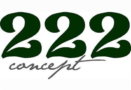 222 Concept