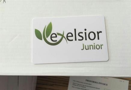 Exelsior Hotels