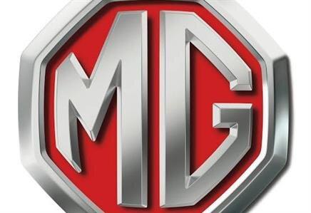 Mg hasar yönetimi