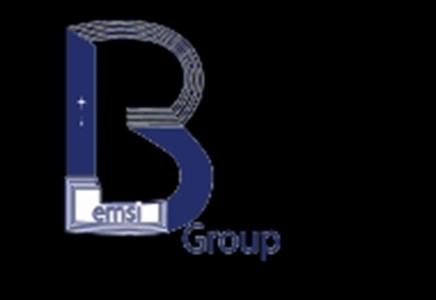 BEMSIGROUP