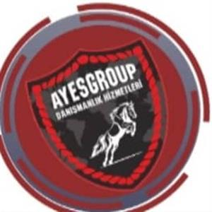 AYES GRUOP