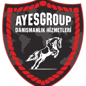 AYES GROUP