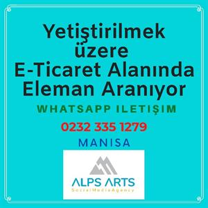 Alps Arts Agency