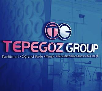 Tepegöz Group