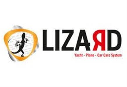 Lizard Car Care