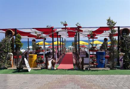 AYIŞIĞI BEACH BAR