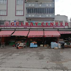 Gülbay Center