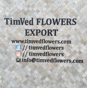 TimVed Flowers